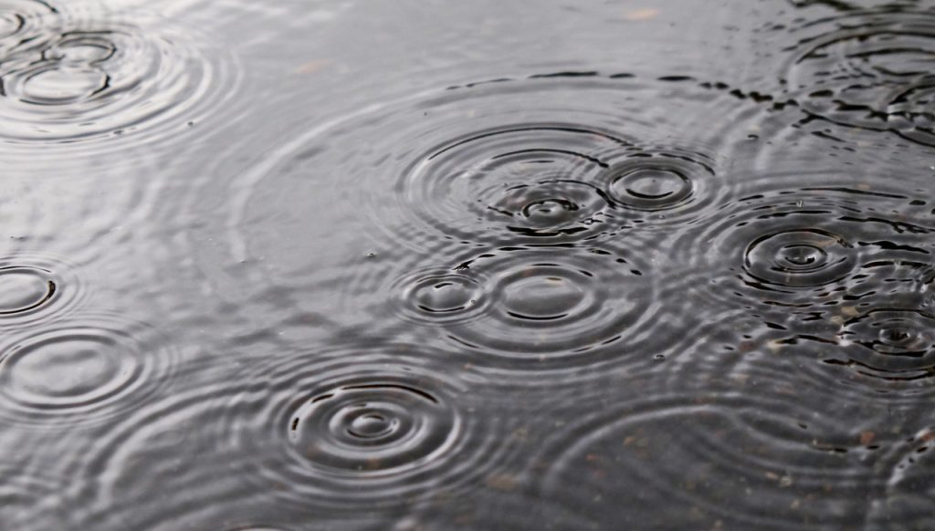 Rains drops in a puddle